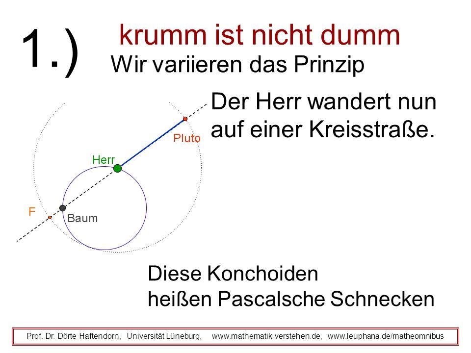 krumm ist nicht dumm Prof. Dr. Dörte Haftendorn, Universität Lüneburg, www.mathematik-verstehen.de, www.leuphana.de/matheomnibus 1.) Wir variieren das