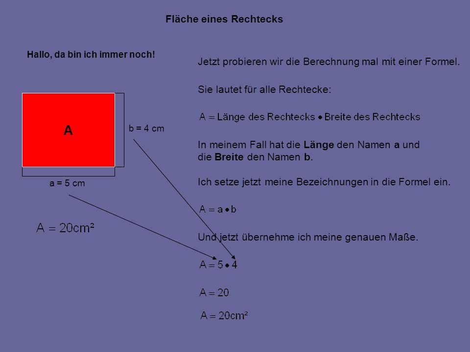 Fläche eines Rechtecks Hallo, da bin ich immer noch! A a = 5 cm b = 4 cm Jetzt probieren wir die Berechnung mal mit einer Formel. Sie lautet für alle