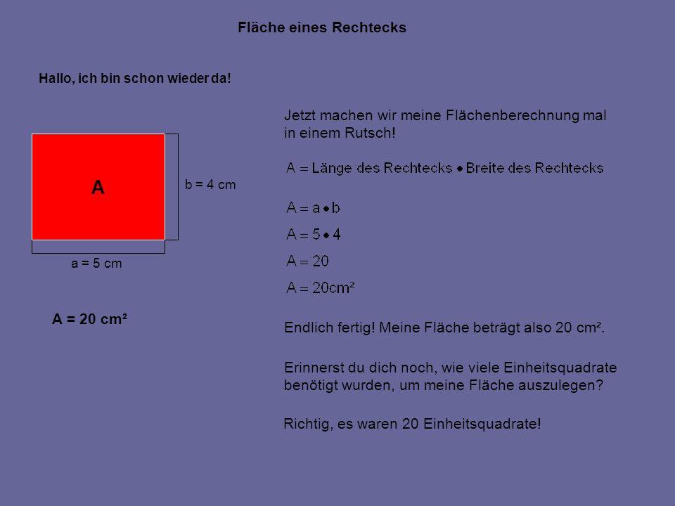 Fläche eines Rechtecks A a = 5 cm b = 4 cm Hallo, ich bin schon wieder da! Jetzt machen wir meine Flächenberechnung mal in einem Rutsch! Endlich ferti