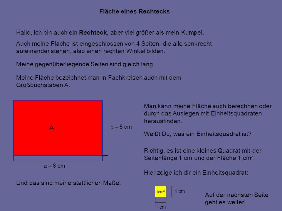 A a = 8 cm b = 5 cm Na, dann wollen wir mal schauen, wie viele Einheitsquadrate benötigt werden, um meine Fläche auszulegen.