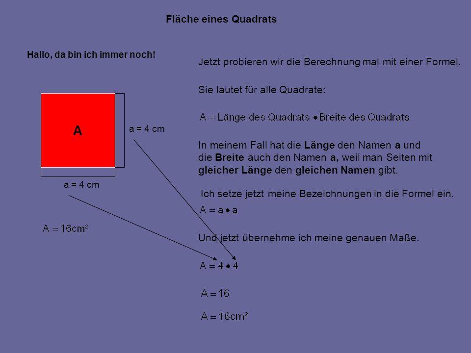 Fläche eines Quadrats Hallo, da bin ich immer noch! A a = 4 cm Jetzt probieren wir die Berechnung mal mit einer Formel. Sie lautet für alle Quadrate: