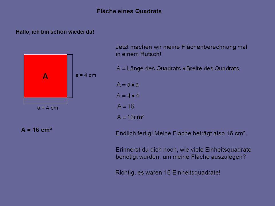 Fläche eines Quadrats A a = 4 cm Hallo, ich bin schon wieder da! Jetzt machen wir meine Flächenberechnung mal in einem Rutsch! Endlich fertig! Meine F