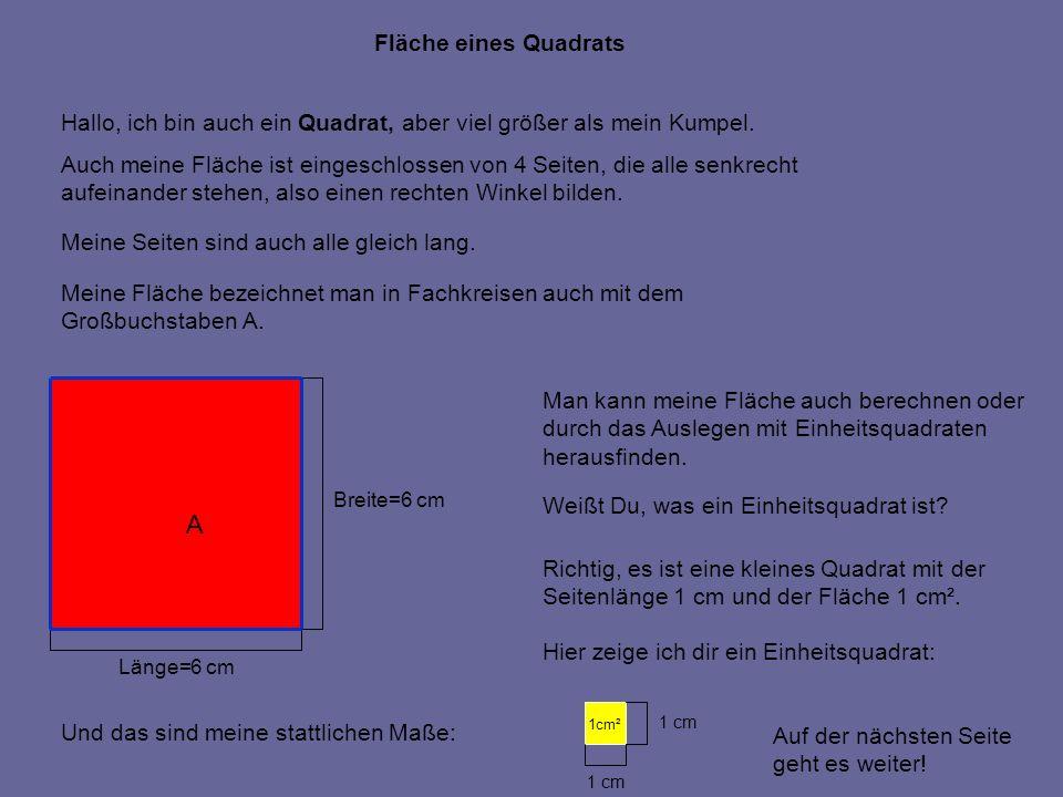 Länge=6 cm Breite=6 cm Fläche eines Quadrats Hallo, ich bin auch ein Quadrat, aber viel größer als mein Kumpel. Auch meine Fläche ist eingeschlossen v