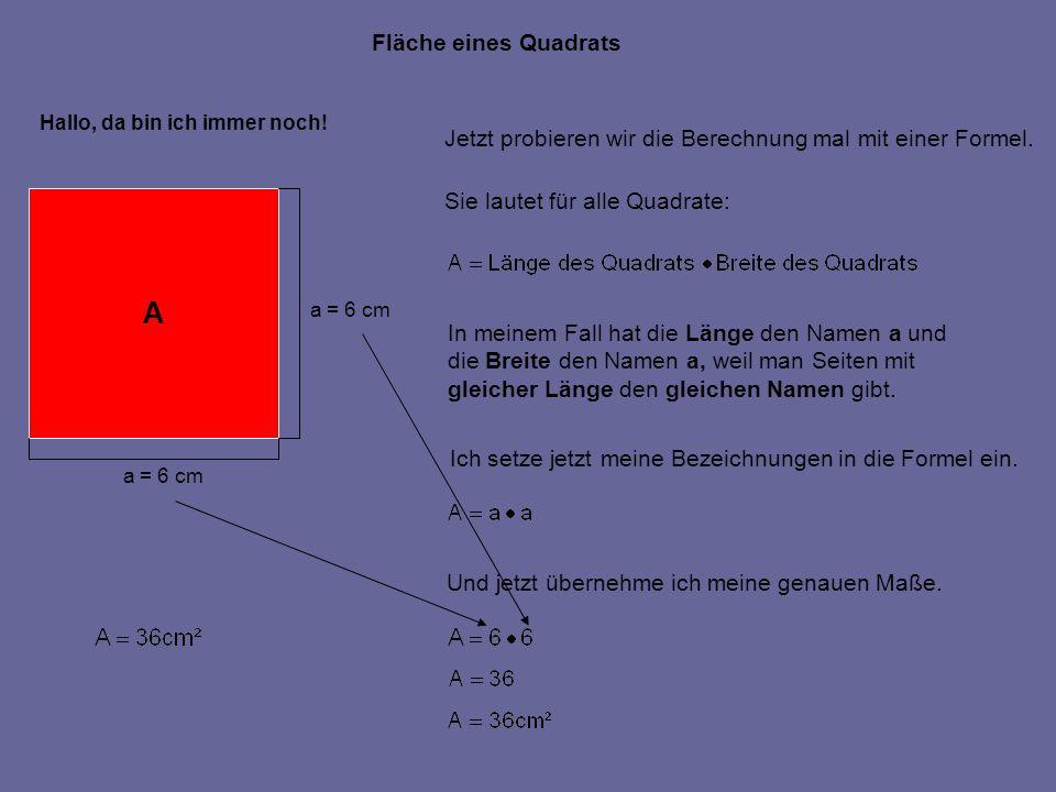 Fläche eines Quadrats Hallo, da bin ich immer noch! Jetzt probieren wir die Berechnung mal mit einer Formel. Sie lautet für alle Quadrate: In meinem F