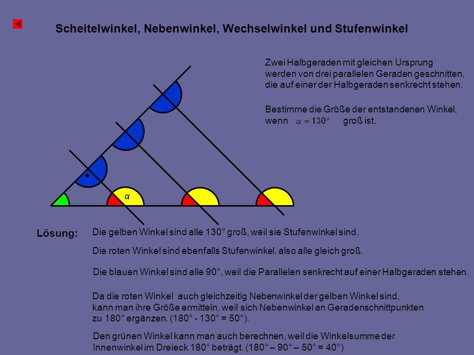 Scheitelwinkel, Nebenwinkel, Wechselwinkel und Stufenwinkel Zwei Halbgeraden mit gleichen Ursprung werden von drei parallelen Geraden geschnitten, die