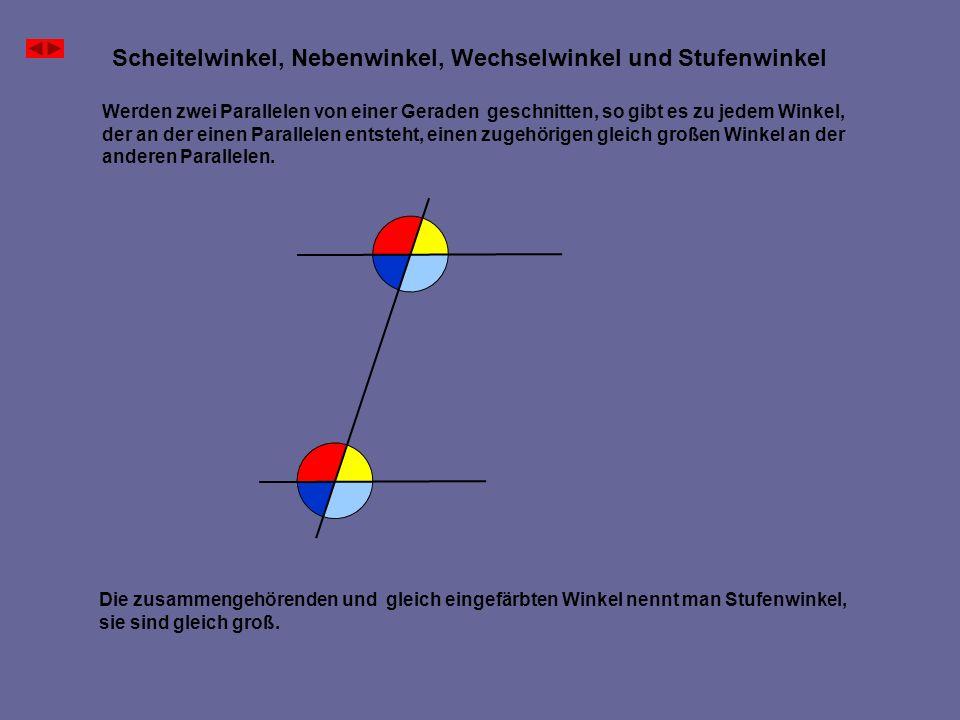 Scheitelwinkel, Nebenwinkel, Wechselwinkel und Stufenwinkel Zwei Halbgeraden mit gleichen Ursprung werden von drei parallelen Geraden geschnitten, die auf einer der Halbgeraden senkrecht stehen.