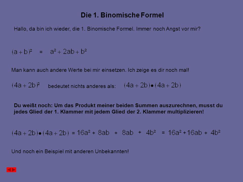 Die 1. Binomische Formel Hallo, da bin ich wieder, die 1.