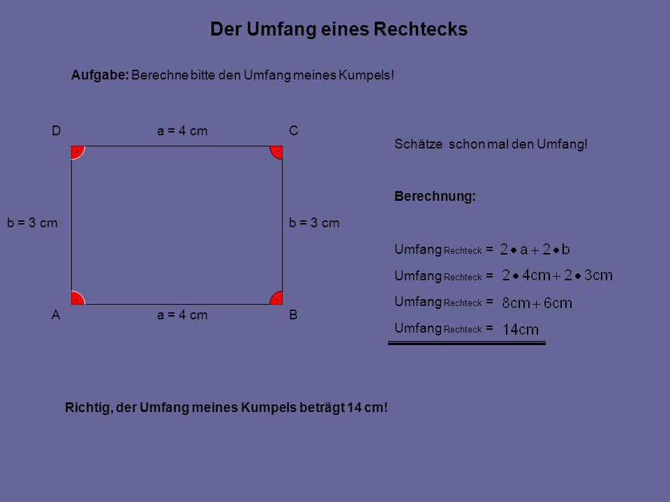 Der Umfang eines Rechtecks AB CD a = 4 cm b = 3 cm a = 4 cm b = 3 cm Aufgabe: Berechne bitte den Umfang meines Kumpels! Umfang Rechteck = Berechnung: