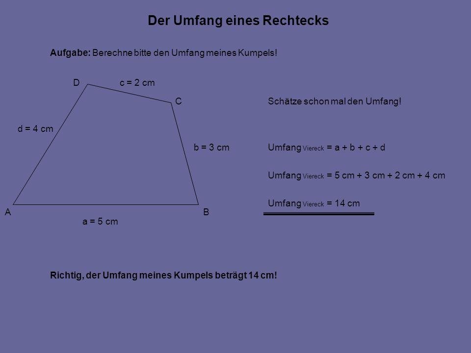 Der Umfang eines Rechtecks Aufgabe: Berechne bitte den Umfang meines Kumpels! Richtig, der Umfang meines Kumpels beträgt 14 cm! Umfang Viereck = a + b