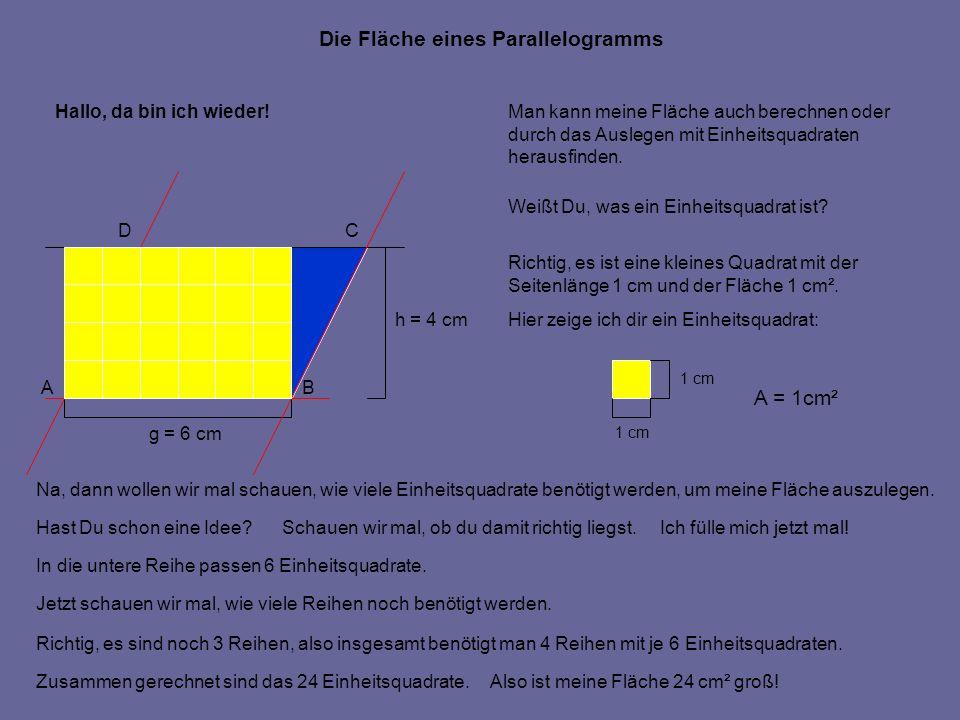 Man kann meine Fläche auch berechnen oder durch das Auslegen mit Einheitsquadraten herausfinden. Weißt Du, was ein Einheitsquadrat ist? Richtig, es is
