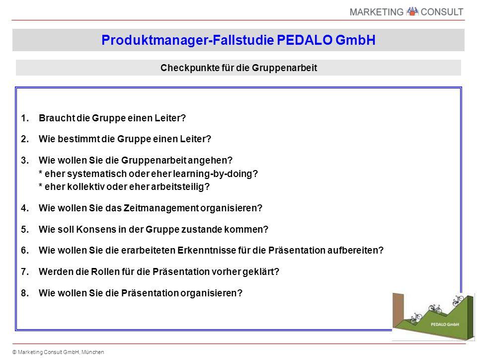© Marketing Consult GmbH, München Maßnahmenplanung – Einzelmaßnahmen für das nächste Planjahr Region Nr.