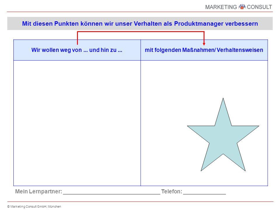 © Marketing Consult GmbH, München Produkt-Marketingplan Blatt 1