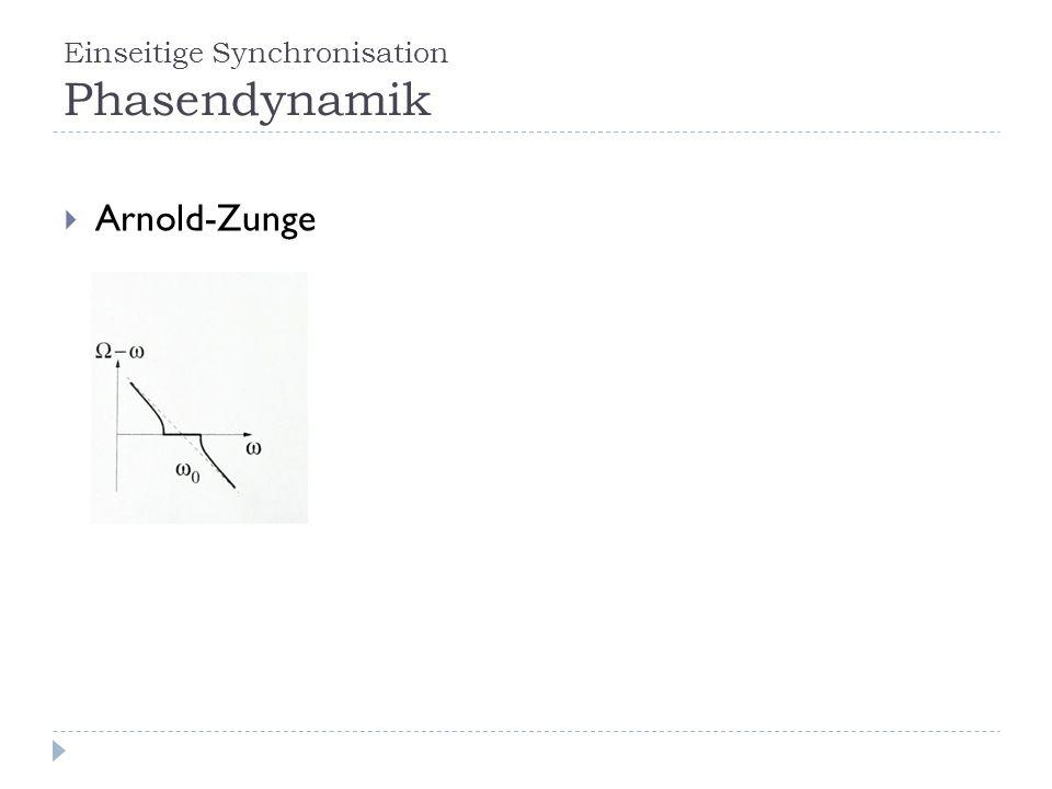 Einseitige Synchronisation Phasendynamik Arnold-Zunge
