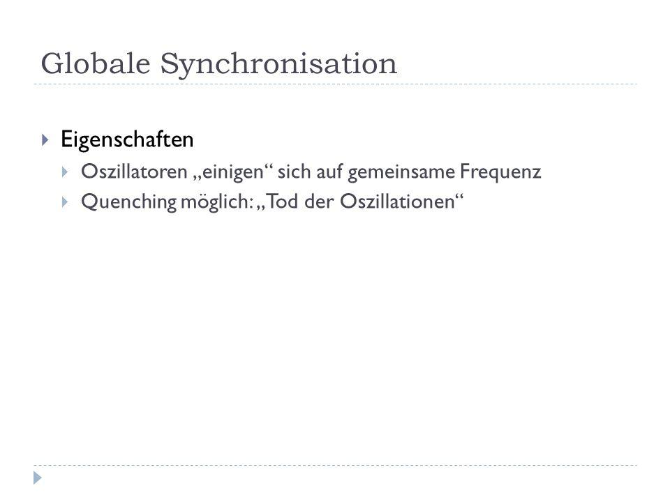 Globale Synchronisation Eigenschaften Oszillatoren einigen sich auf gemeinsame Frequenz Quenching möglich: Tod der Oszillationen