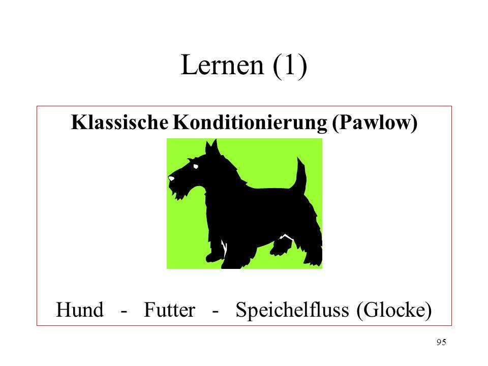 95 Lernen (1) Klassische Konditionierung (Pawlow) Hund - Futter - Speichelfluss (Glocke)