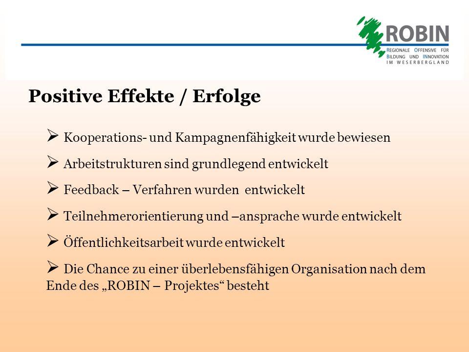 Positive Effekte / Erfolge Kooperations- und Kampagnenfähigkeit wurde bewiesen Arbeitstrukturen sind grundlegend entwickelt Feedback – Verfahren wurden entwickelt Teilnehmerorientierung und –ansprache wurde entwickelt Öffentlichkeitsarbeit wurde entwickelt Die Chance zu einer überlebensfähigen Organisation nach dem Ende des ROBIN – Projektes besteht