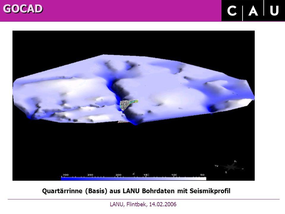 GOCAD LANU, Flintbek, 14.02.2006 Quartärrinne (Basis) aus LANU Bohrdaten mit Seismikprofil