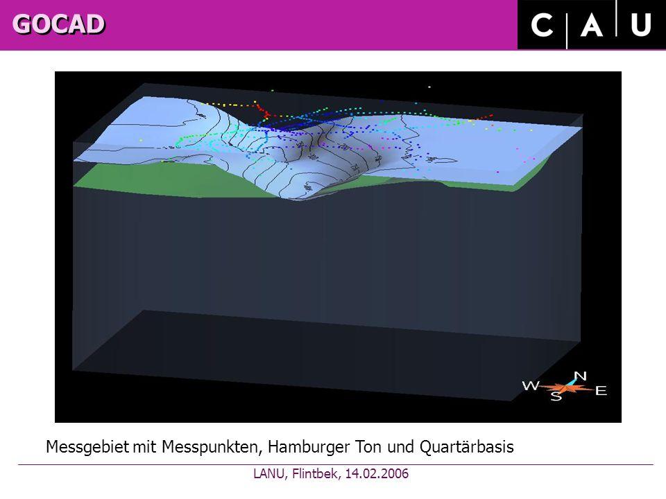 GOCAD Messgebiet mit Messpunkten, Hamburger Ton und Quartärbasis LANU, Flintbek, 14.02.2006