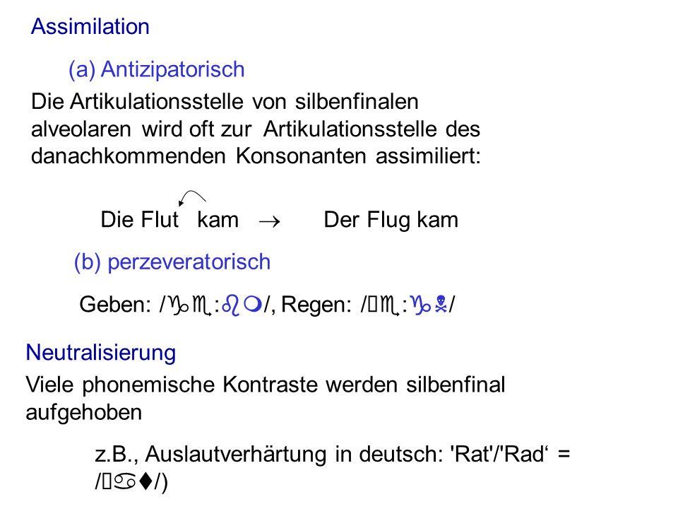 Lenisierung Vokalisierung Silbenfinale Tilgung Lastwagen -> Las(t)wagen silbenfinaler /k/ wird [C] in nord-deutsch ( König ) die Erzeugung von einem Konsonanten mit größerer Öffnung (Plosiv Frikativ Approximant) silbenfinaler /l/ in Englisch.
