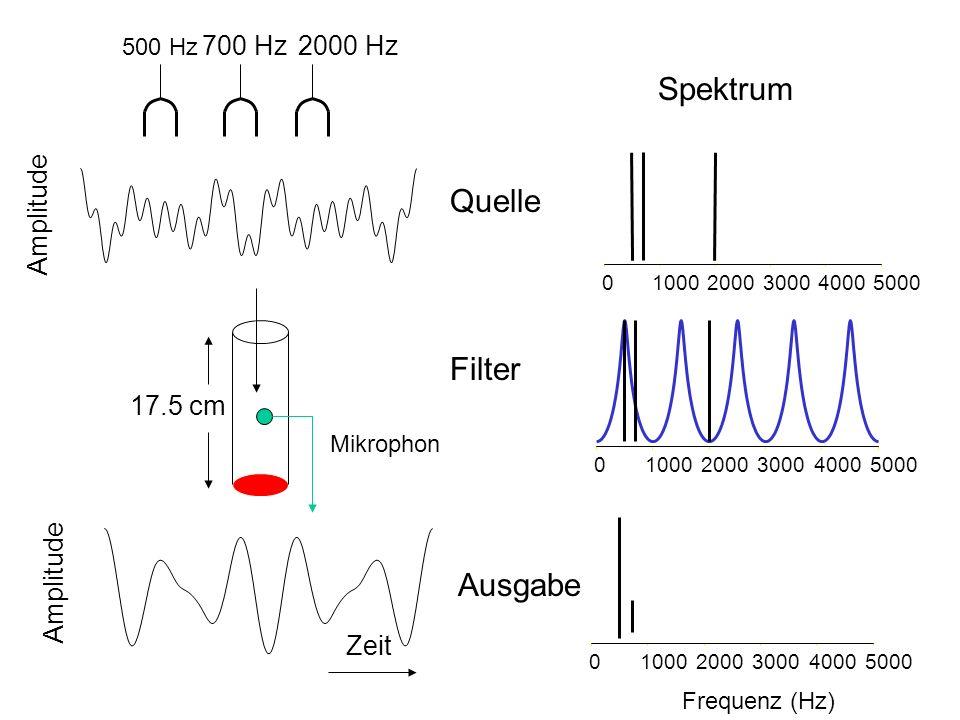 500 Hz 700 Hz2000 Hz 010002000300040005000 Amplitude Spektrum Quelle 17.5 cm 01000200030004000 5000 Mikrophon Filter Amplitude Zeit 01000200030004000