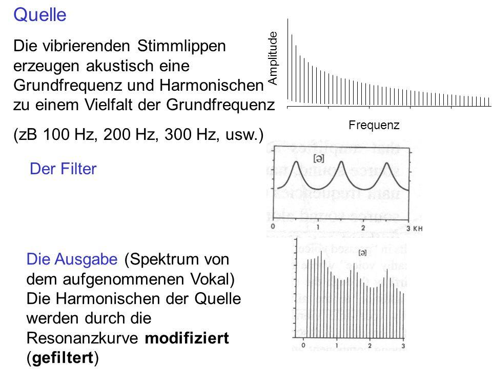 Der Filter Die Ausgabe (Spektrum von dem aufgenommenen Vokal) Die Harmonischen der Quelle werden durch die Resonanzkurve modifiziert (gefiltert) Quell