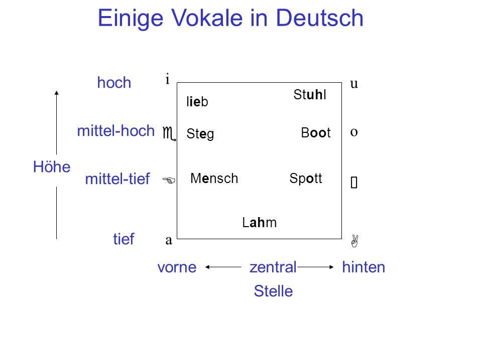 Einige Vokale in Deutsch i A Höhe Stelle vornehinten hoch tief zentral a mittel-hoch mittel-tief e E u o  lieb Steg Lahm Stuhl Boot MenschSpott