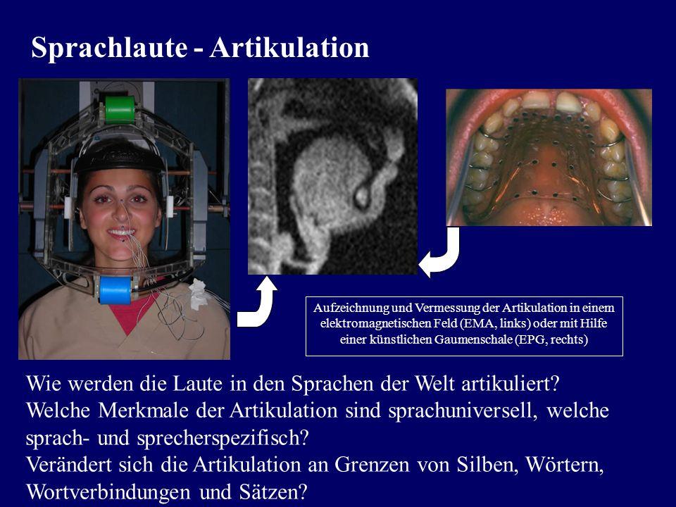 Sprachlaute - Lautschrift Weitgehend artikulatorisch definiertes System der International Phonetic Association zur detaillierten Beschreibung der gehö