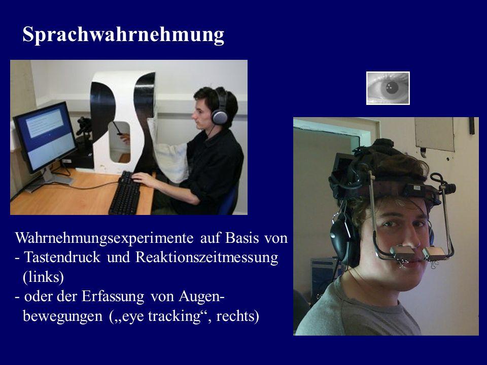Sprachwahrnehmung Kernfrage: Wie…zum Geier…schafft es der Hörer, das kodierte und durch Verschleifung komprimierte Sprachsignal zu dekodieren und all