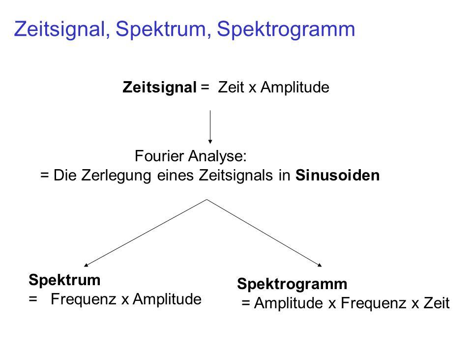 Zeitsignal, Spektrum, Spektrogramm Zeitsignal = Zeit x Amplitude Spektrum = Frequenz x Amplitude Spektrogramm = Amplitude x Frequenz x Zeit Fourier An