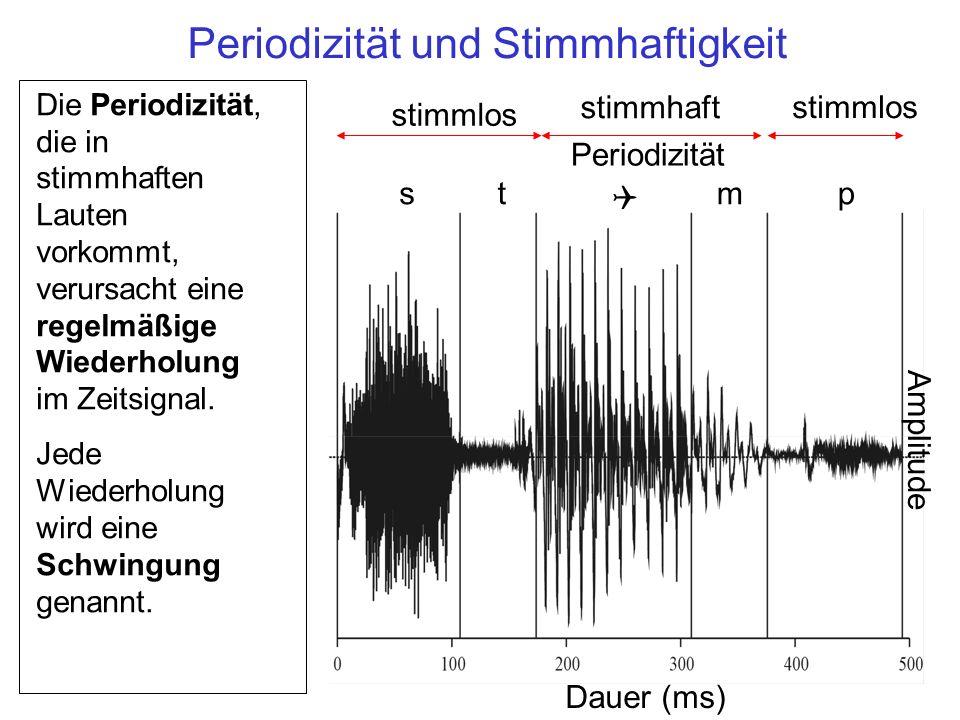 st Q mp Periodizität Amplitude Dauer (ms) stimmlos stimmhaft stimmlos Die Periodizität, die in stimmhaften Lauten vorkommt, verursacht eine regelmäßig
