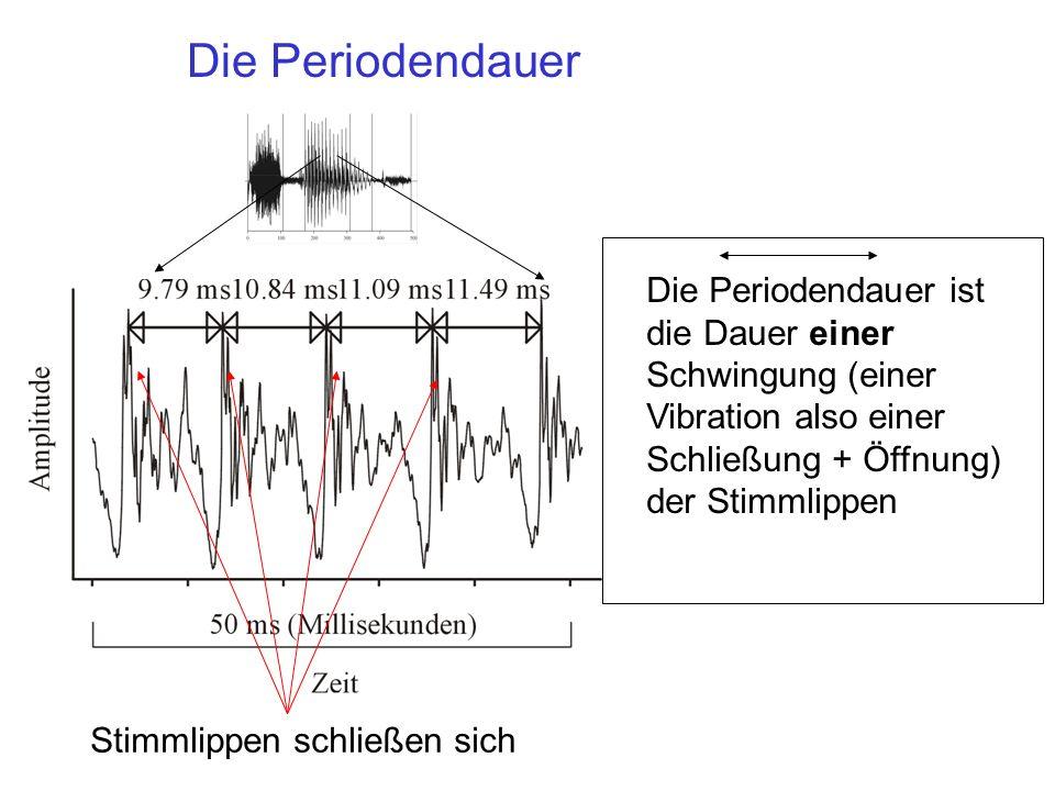 Die Periodendauer Die Periodendauer ist die Dauer einer Schwingung (einer Vibration also einer Schließung + Öffnung) der Stimmlippen Stimmlippen schli
