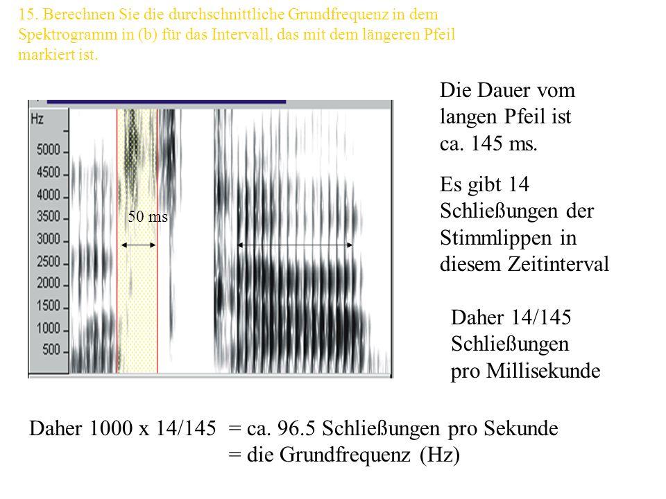 Oder: Die Harmonischen erscheinen wenn die Frequenzauflösung kleiner als die Grundfrequenz ist. Bei einer Periodendauer von 5 ms ist die Grundfrequenz