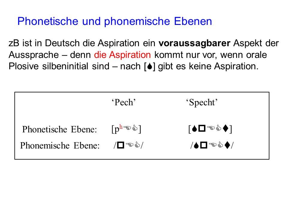 Zwei abstrakte Ebenen der Lautdarstellung 1. Phonetische Ebene Eine Ebene der Lautdarstellung, in der die sprecherbedingten Aspekte (zB männlich/weibl