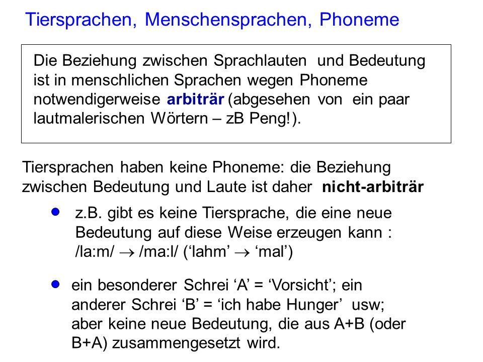 Phoneme und der Wortschatz Ohne Phoneme könnte das Lexikon (Wortschatz) in menschlichen Sprachen nie groß genug werden. In einer hypothetischen Sprach