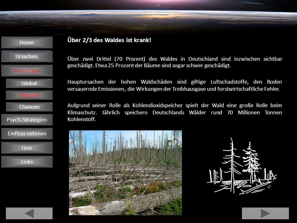 Über 2/3 des Waldes ist krank! Über zwei Drittel (70 Prozent) des Waldes in Deutschland sind inzwischen sichtbar geschädigt. Etwa 25 Prozent der Bäume