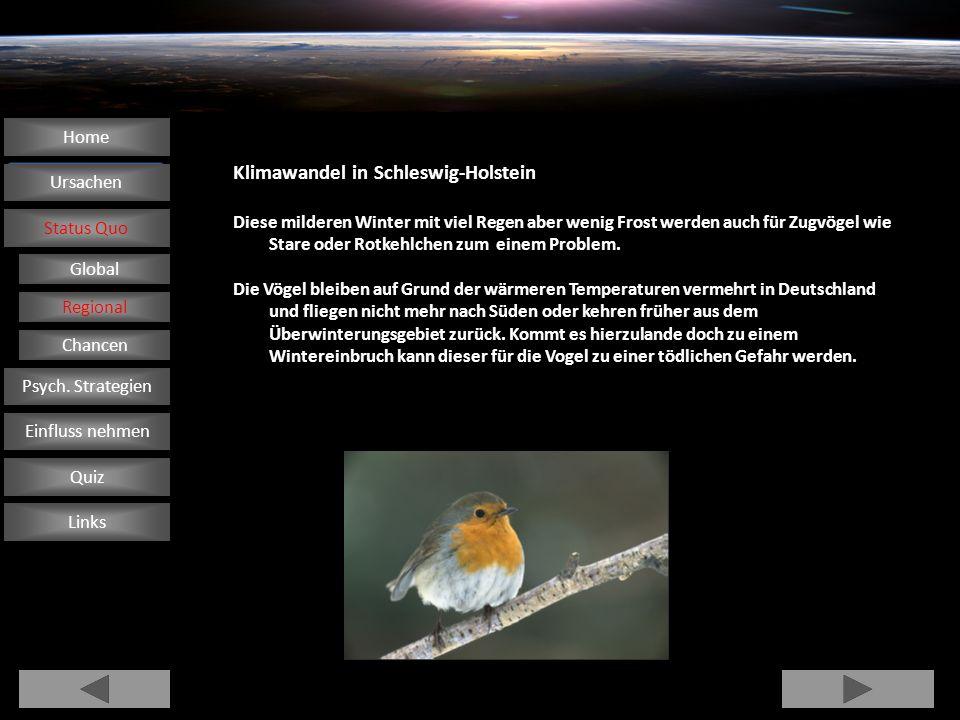 Klimawandel in Schleswig-Holstein Diese milderen Winter mit viel Regen aber wenig Frost werden auch für Zugvögel wie Stare oder Rotkehlchen zum einem
