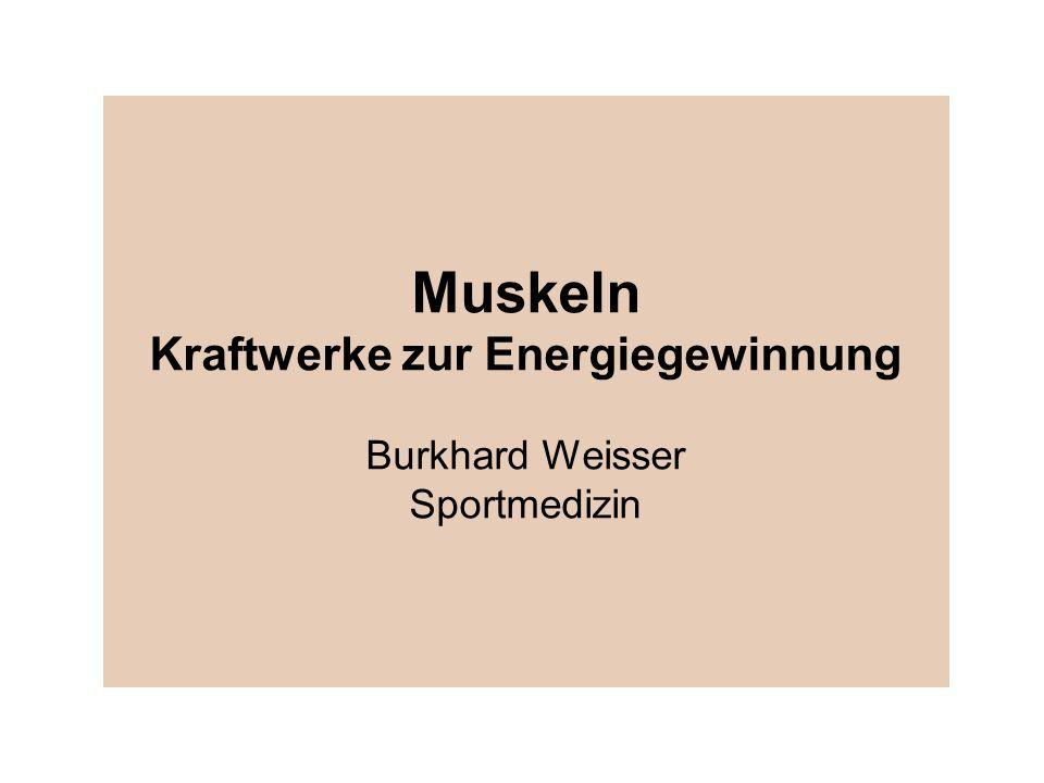 Muskeln Kraftwerke zur Energiegewinnung Burkhard Weisser Sportmedizin