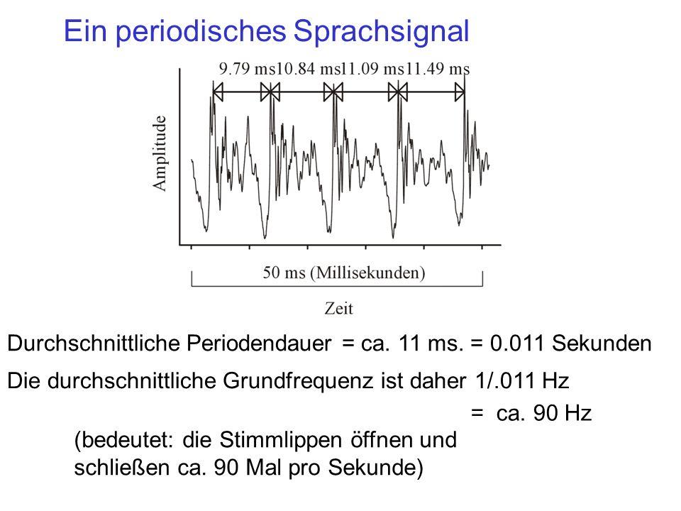 Ein periodisches Sprachsignal Durchschnittliche Periodendauer = ca. 11 ms. = 0.011 Sekunden Die durchschnittliche Grundfrequenz ist daher 1/.011 Hz (b