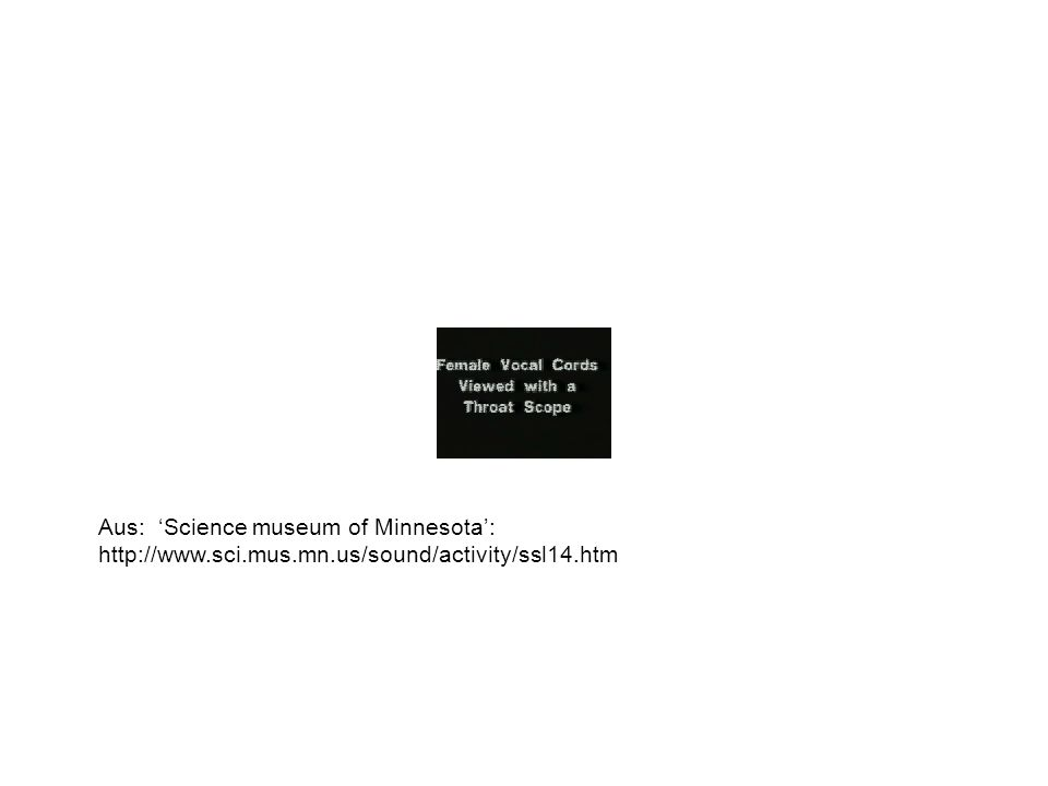 Aus: Science museum of Minnesota: http://www.sci.mus.mn.us/sound/activity/ssl14.htm
