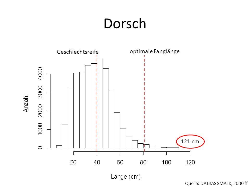 Dorsch Geschlechtsreife optimale Fanglänge Quelle: DATRAS SMALK, 2000 ff 121 cm