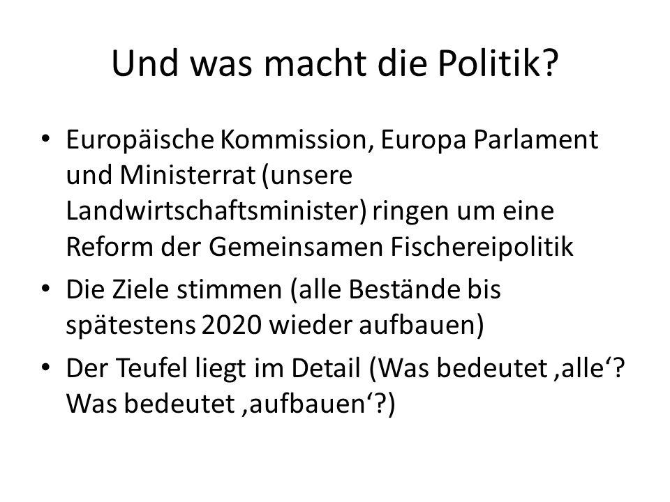 Und was macht die Politik? Europäische Kommission, Europa Parlament und Ministerrat (unsere Landwirtschaftsminister) ringen um eine Reform der Gemeins