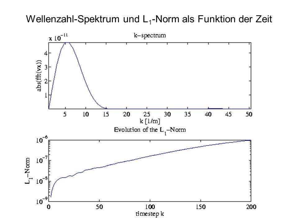 Wellenzahl-Spektrum und L 1 -Norm als Funktion der Zeit