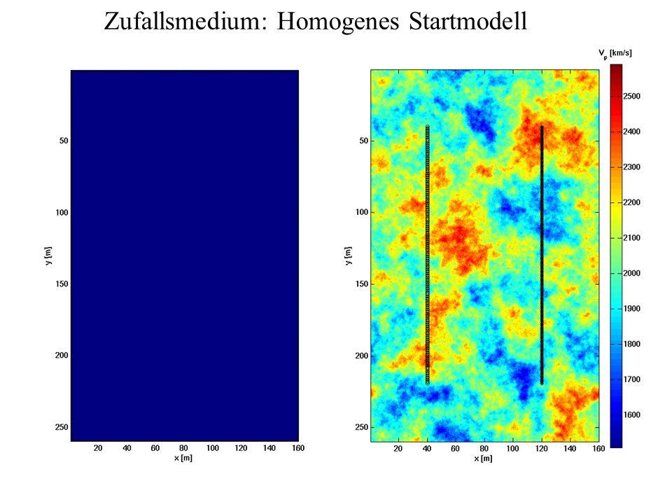 Zufallsmedium: Homogenes Startmodell