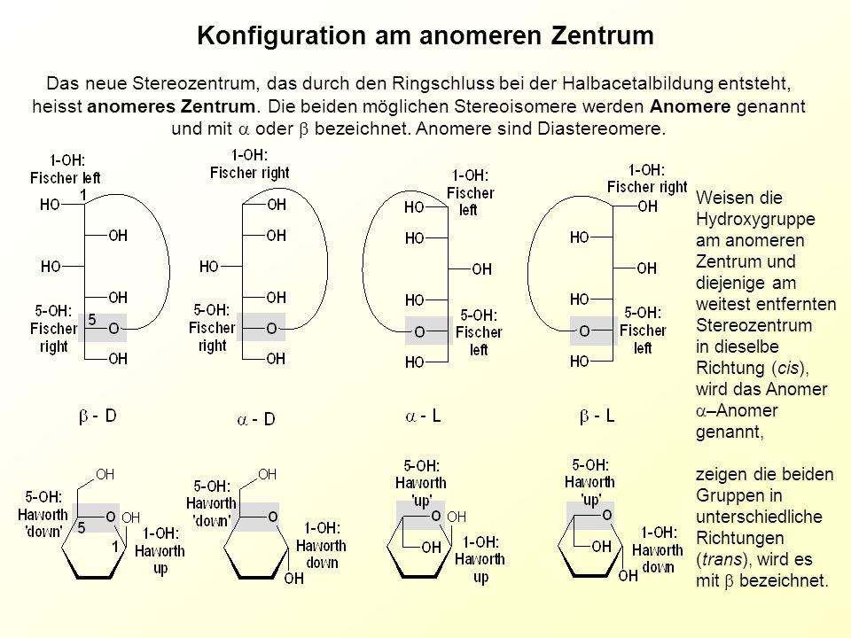 Das neue Stereozentrum, das durch den Ringschluss bei der Halbacetalbildung entsteht, heisst anomeres Zentrum. Die beiden möglichen Stereoisomere werd