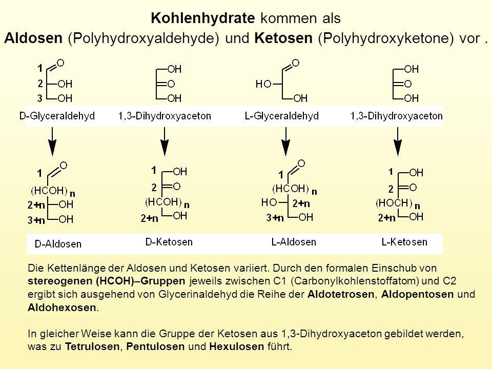 Die Kettenlänge der Aldosen und Ketosen variiert. Durch den formalen Einschub von stereogenen (HCOH)–Gruppen jeweils zwischen C1 (Carbonylkohlenstoffa