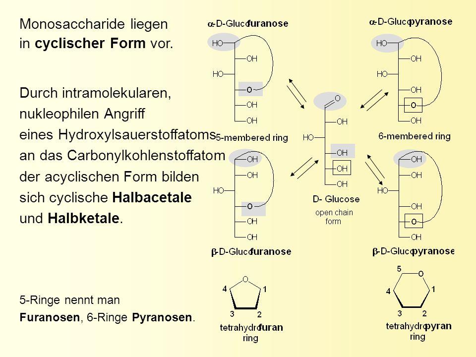 Durch intramolekularen, nukleophilen Angriff eines Hydroxylsauerstoffatoms an das Carbonylkohlenstoffatom der acyclischen Form bilden sich cyclische H