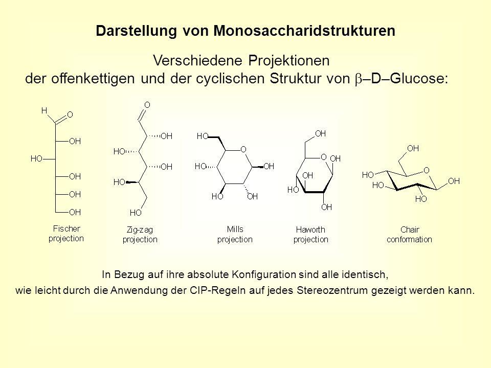 Verschiedene Projektionen der offenkettigen und der cyclischen Struktur von –D–Glucose: Darstellung von Monosaccharidstrukturen In Bezug auf ihre abso
