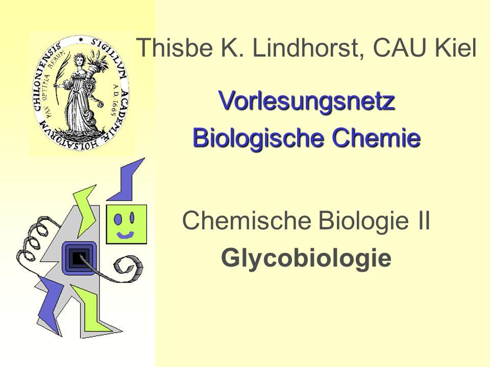 Thisbe K. Lindhorst, CAU Kiel Vorlesungsnetz Biologische Chemie Chemische Biologie II Glycobiologie