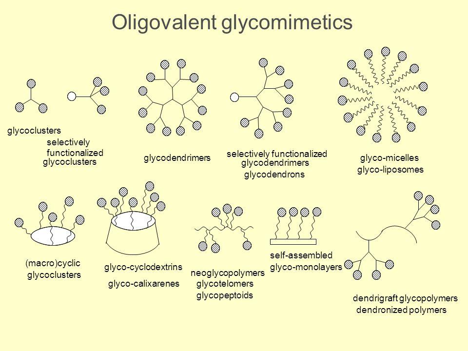Oligovalent glycomimetics glycoclusters selectively functionalized glycoclusters selectively functionalized glycodendrimers glycodendrons glycodendrim
