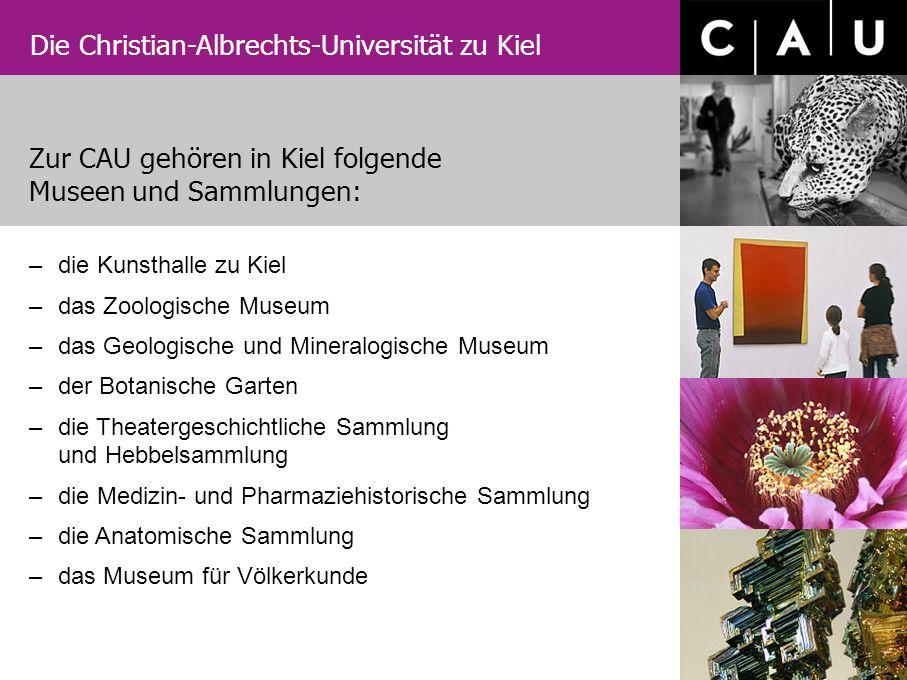 Die Christian-Albrechts-Universität zu Kiel –die Kunsthalle zu Kiel –das Zoologische Museum –das Geologische und Mineralogische Museum –der Botanische